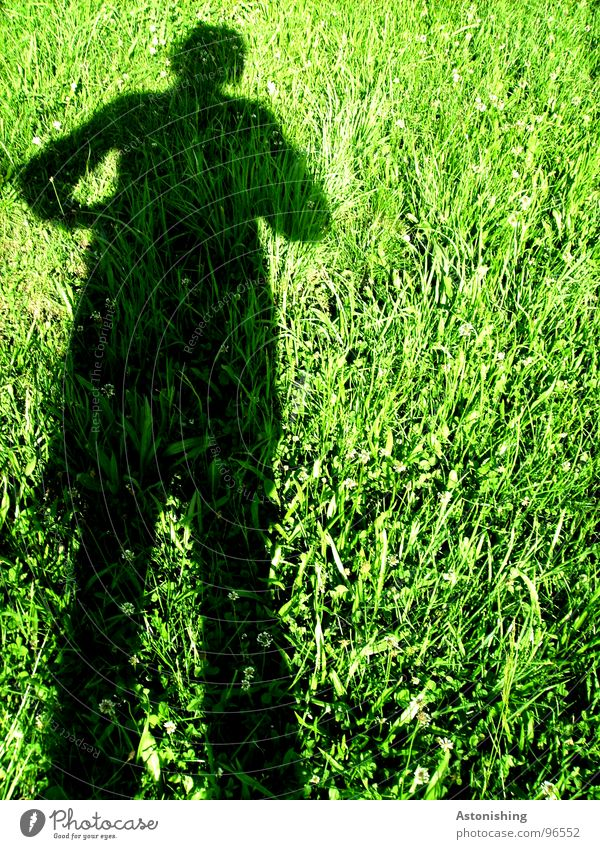 The shadow man 1 Summer Sun Human being Masculine Man Adults Hand Legs Environment Nature Landscape Plant Weather Beautiful weather Warmth Grass Meadow Stand