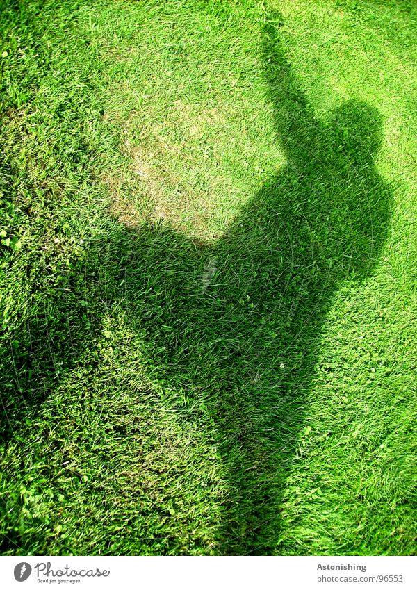 The Shadow Man 2 Summer Human being Masculine Adults Arm Hand Legs 1 Environment Plant Weather Beautiful weather Grass Foliage plant Meadow Movement Tall Green