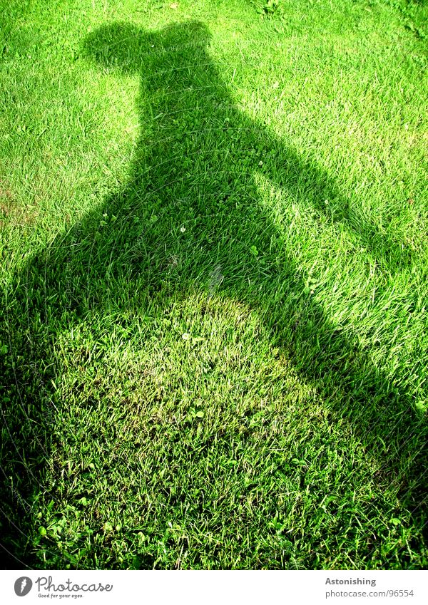 The Shadow Man 3 Summer Human being Masculine Adults Arm Legs 1 Environment Weather Beautiful weather Plant Grass Foliage plant Meadow Movement Green Black Lawn