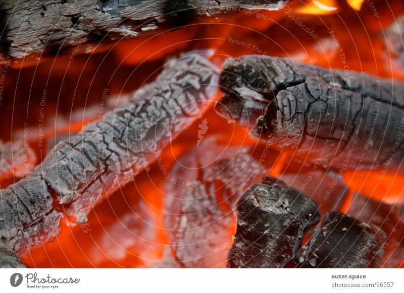 Wood Blaze Hot Barbecue (event) Ashes Embers Incandescent