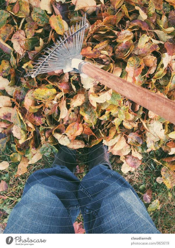 Human being Nature Plant Tree Leaf Autumn Garden Legs Feet Work and employment Lawn Pants Jeans Autumn leaves Gardening Rubber boots