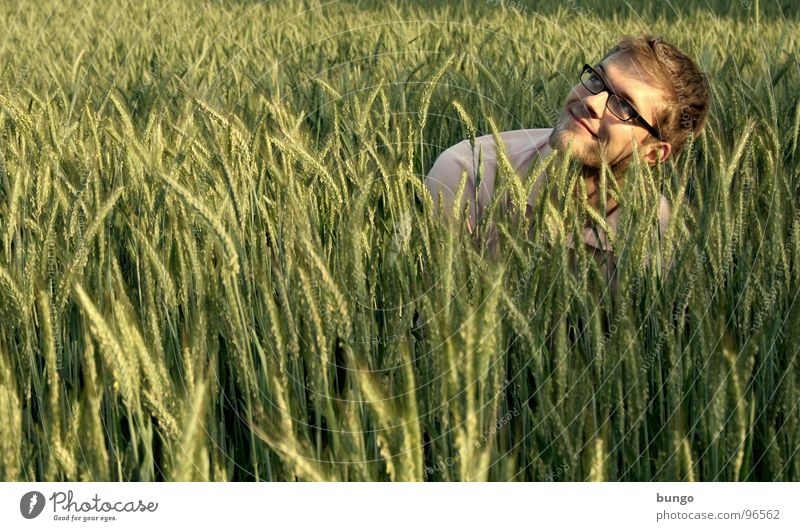 Human being Man Laughter Field Sit Search Eyeglasses Grain Middle Touch Agriculture Hide Well-being Wheat Ear of corn