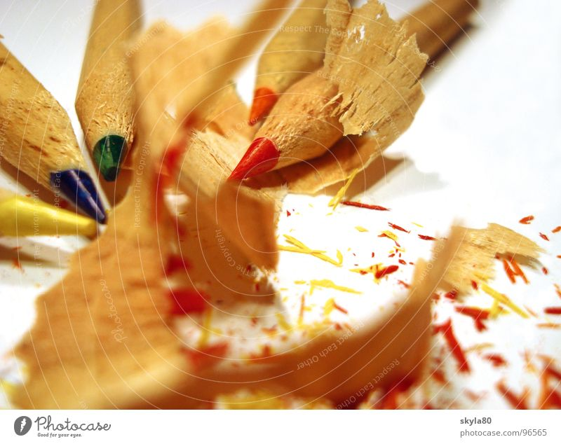 Colourful Crayon Colorant Multicoloured Sharpener Splinter Trash Wood Shavings Drawing Painting (action, work) Write Close-up Sharpened Detail Childhood memory