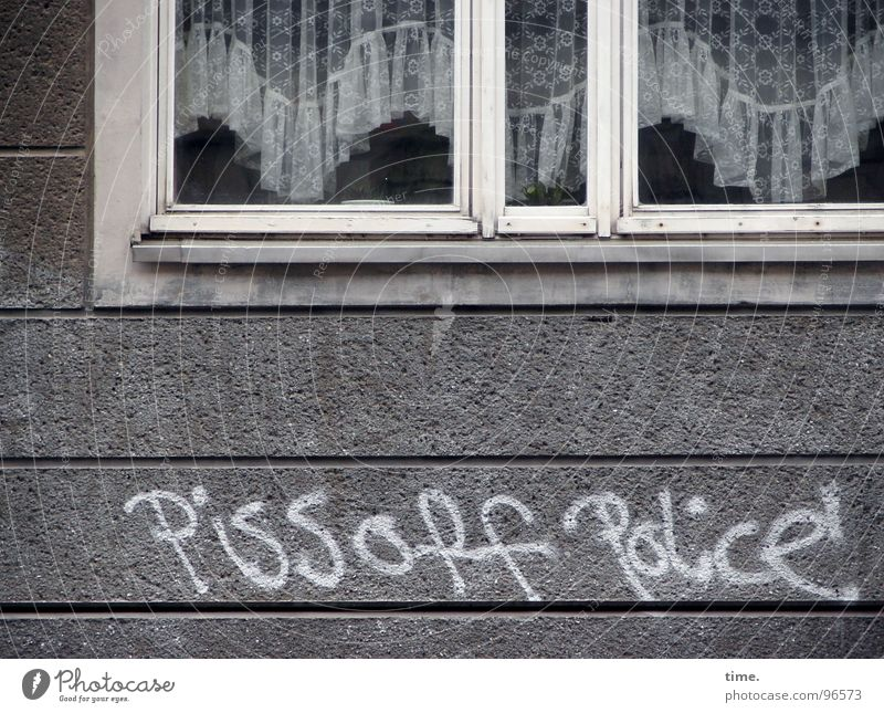 Roar in idyll House (Residential Structure) Services Police Force Art Window Stone Graffiti Gray White Orderliness Anger Grouchy Animosity Frustration
