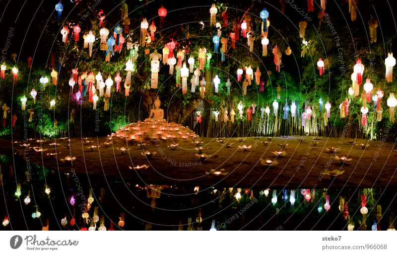 festival of lights Decoration Lampion Multicoloured Exotic Serene Happy Religion and faith Tradition Buddhism Light Candlelight Thailand Asia Reflection