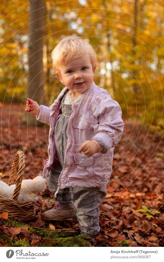 Human being Child Nature Tree Leaf Landscape Girl Forest Yellow Autumn Feminine Small Happy Laughter Brown Family & Relations