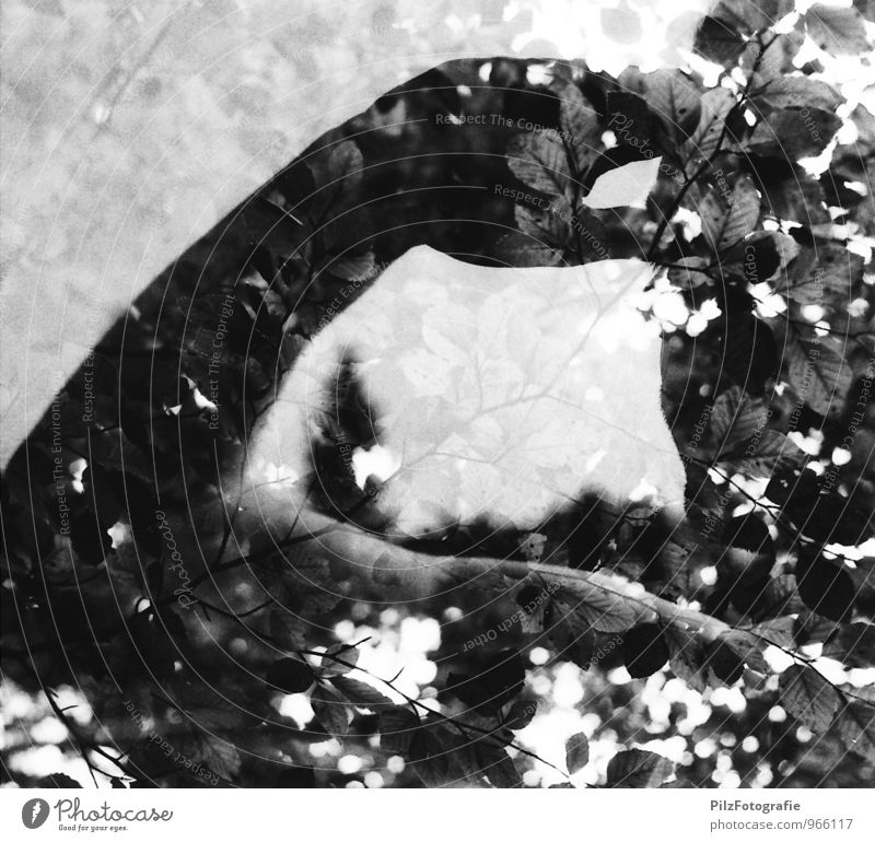 Saluting in the forest Masculine Head Arm 1 Human being Tree Branch Leaf Twigs and branches Nature Double exposure Salute Looking Black & white photo