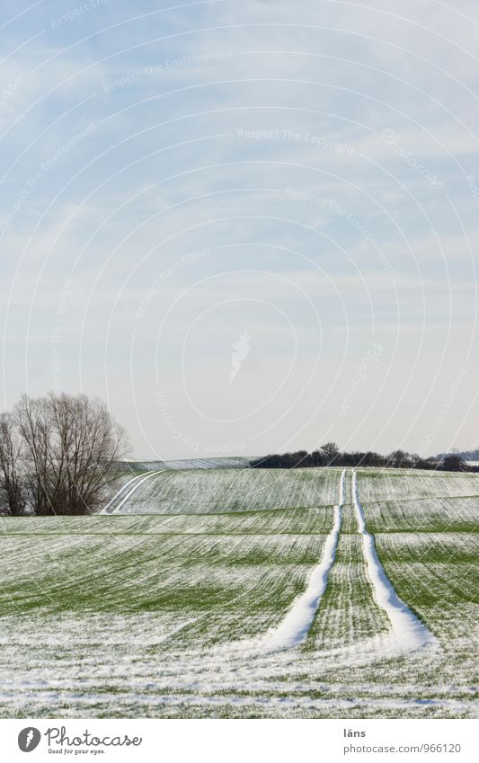 beginning of winter Winter Snow Tracks Agriculture Sky Far-off places