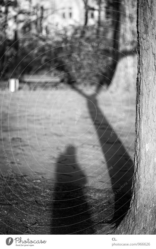 me again Leisure and hobbies Human being Adults 1 Environment Nature Beautiful weather Tree Garden Meadow Self portrait Tree trunk Shadow play Take a photo