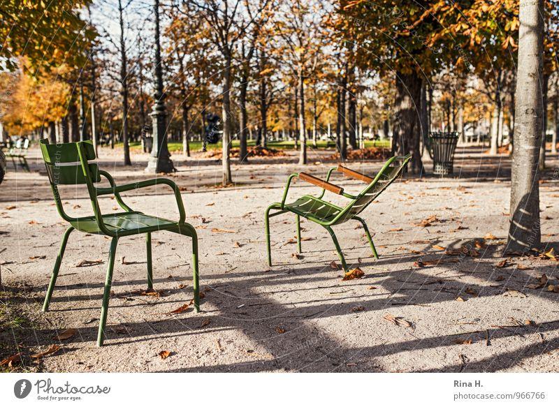 Tree Garden Park Wait Paris Autumn leaves Garden chair 2014