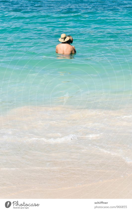 Human being Woman Vacation & Travel Youth (Young adults) Man Relaxation Ocean 18 - 30 years Beach Adults Coast Feminine Love Happy Swimming & Bathing Couple