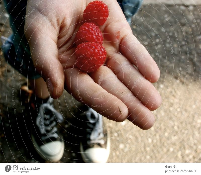 Hand Red Nutrition Grass Lanes & trails Stone Eating Footwear Fruit Skin 3 Concrete Fresh Fingers Round Harvest