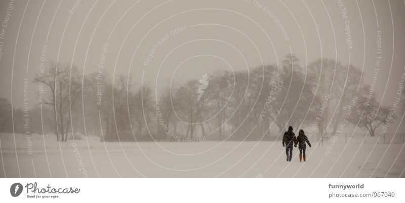 winter couple's walk Human being Couple Life 2 Nature Winter Fog Ice Frost Snow Tree Park Field Moody Trust Safety Agreed Loyal Sympathy Friendship Together