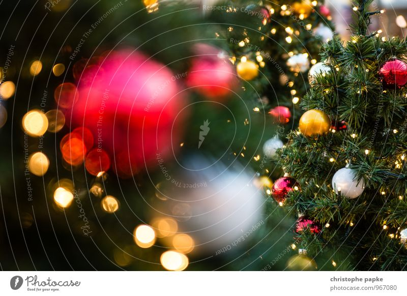 Christmas & Advent Tree - a Royalty Free Stock Photo from Photocase