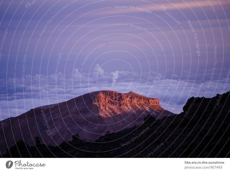 Sunset on the Teide Environment Nature Landscape Mountain Far-off places Clouds Tenerife Mountain range Peak Dusk Colour photo