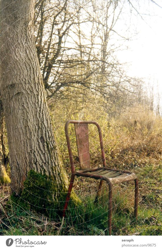 Silence Tree Calm Break Grief Loneliness Relaxation Remote Autumnal Environment Derelict Scrap metal Oak tree Tree bark Meadow Broken Bushes Furniture Time