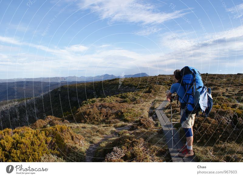 overland track Vacation & Travel Trip Adventure Summer Mountain Hiking Climbing Mountaineering Human being Masculine 1 18 - 30 years Youth (Young adults) Adults
