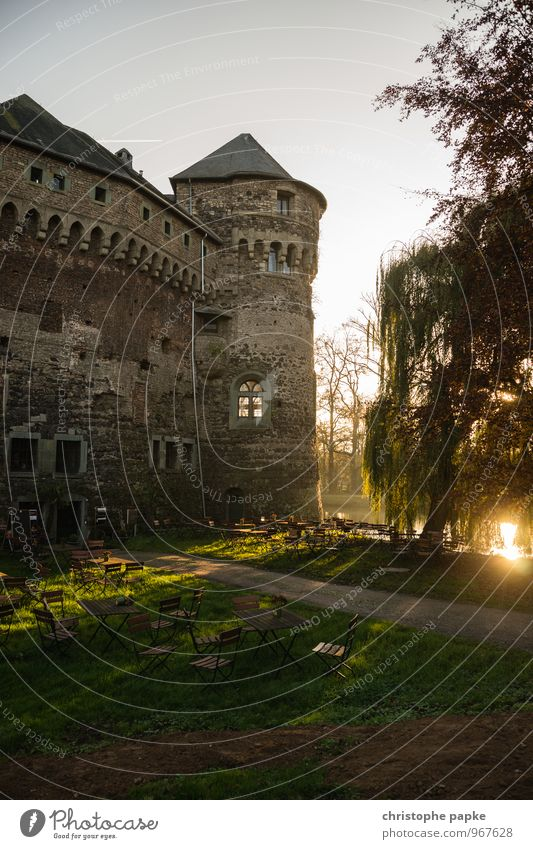 Thick Berta at sunset Trip Autumn Park Castle Manmade structures Building Architecture Old Historic Castle tower Café Romance Medieval times Fortress