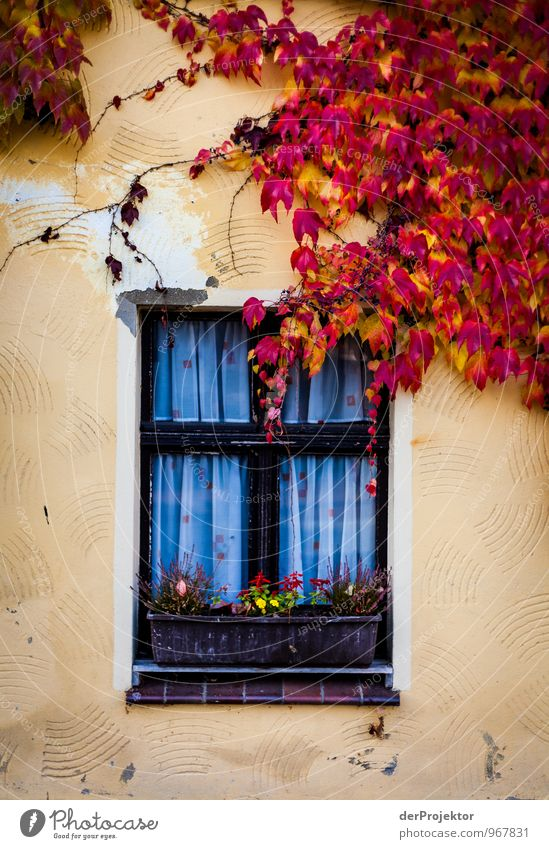 Vacation & Travel Old Red Window Yellow Architecture Emotions Facade Living or residing Tourism Authentic Trip Mysterious Village Hip & trendy Crucifix