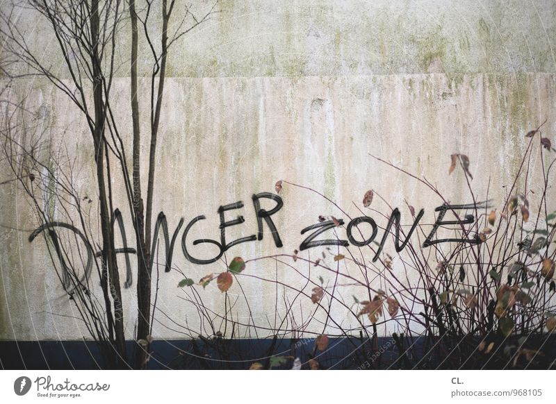 DANGER ZONE Nature Autumn Tree Bushes Leaf Branch Wall (barrier) Wall (building) Characters Graffiti Dirty Gloomy Dangerous Destruction Risk Colour photo
