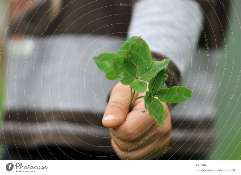happiness³ Human being Androgynous Child Toddler Hand 1 1 - 3 years Environment Plant Foliage plant Agricultural crop Clover Cloverleaf To hold on Happy Donate
