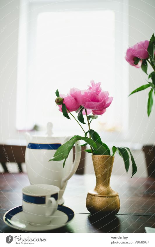 Relaxation Flower Eating Lifestyle Flat (apartment) Room Living or residing Table Beverage Easter Drinking Coffee Tradition Breakfast Crockery Tea