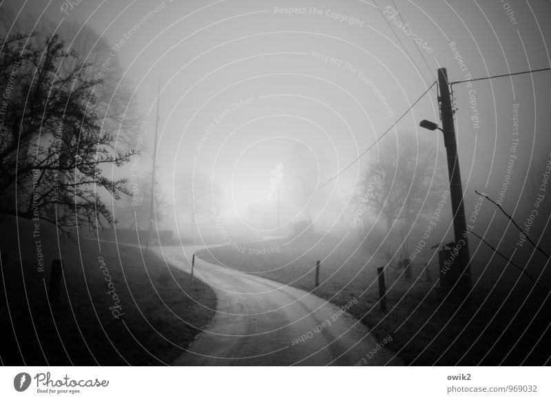 Into the fog Electricity pylon Cable Energy industry Fog Traffic infrastructure Street Curve Pole Threat Dark Concern Grief Pain Longing Fear Dangerous Idyll