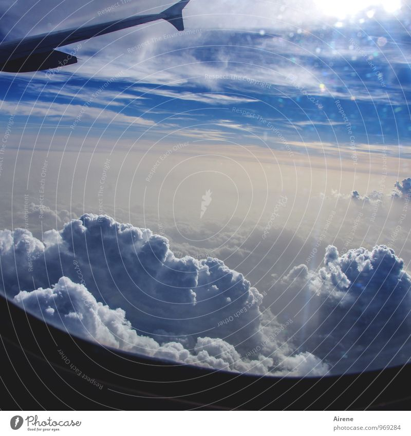 Sky Nature Vacation & Travel Blue White Sun Clouds Far-off places Airplane window Flying Tourism Aviation Free Tall Speed