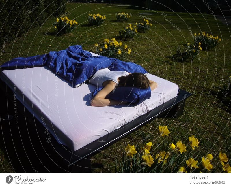 Dreamin' away II Bed Sleep Summer Physics Flower Yellow Green Field Park Warmth Blue Lawn Nature Exterior shot