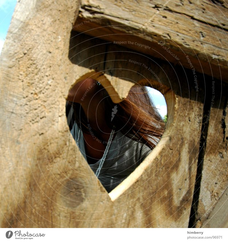 Woman Love Wood Hair and hairstyles Heart Vista