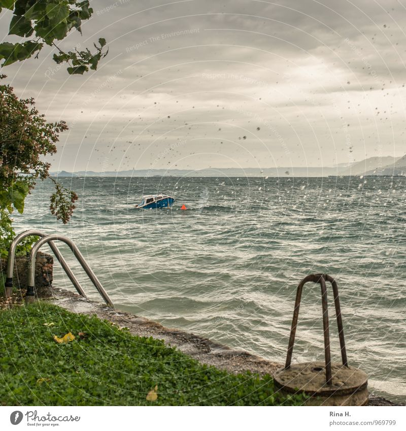 Storm over Lake Garda II Environment Nature Landscape Clouds Summer Climate Weather Bad weather Gale Rain Grass Bushes Lakeside Italy Sport boats Motorboat