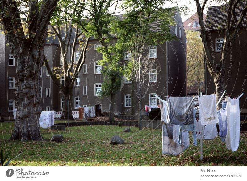 razorback Environment Town House (Residential Structure) Building Clean Gray White Laundry Washing Cotheshorse Interior courtyard Neighbor Meadow Tree