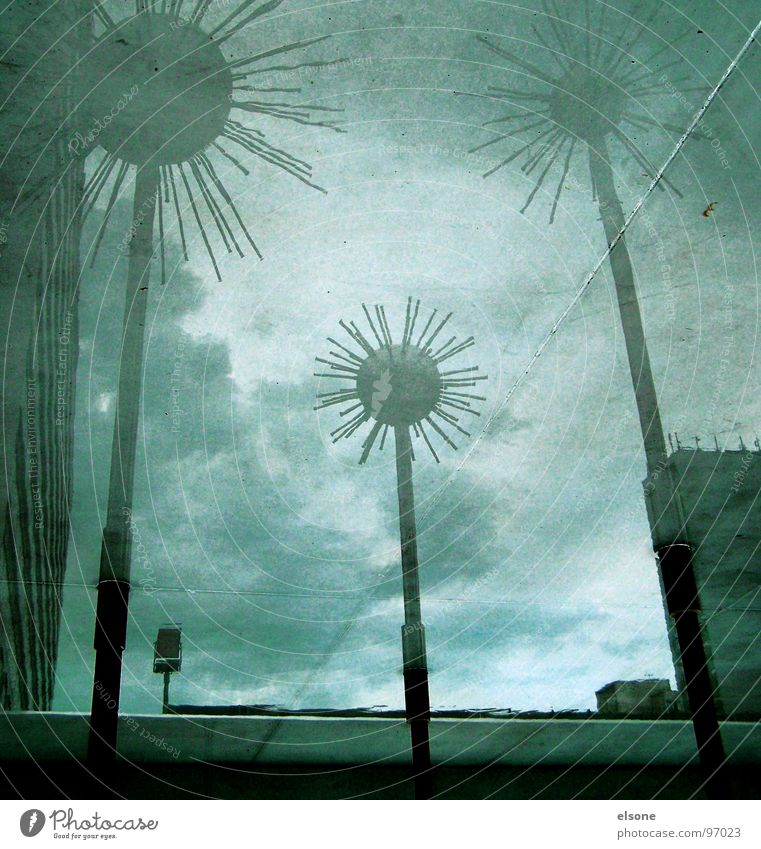 Water Metal Art Wet Crazy Culture Dresden Sphere Well Sculpture Landmark Surrealism Puddle Mirror image Rod Aluminium