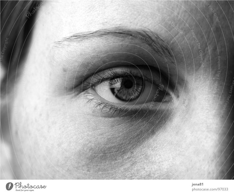 Human being Face Eyes Emotions Senses Truth Visible