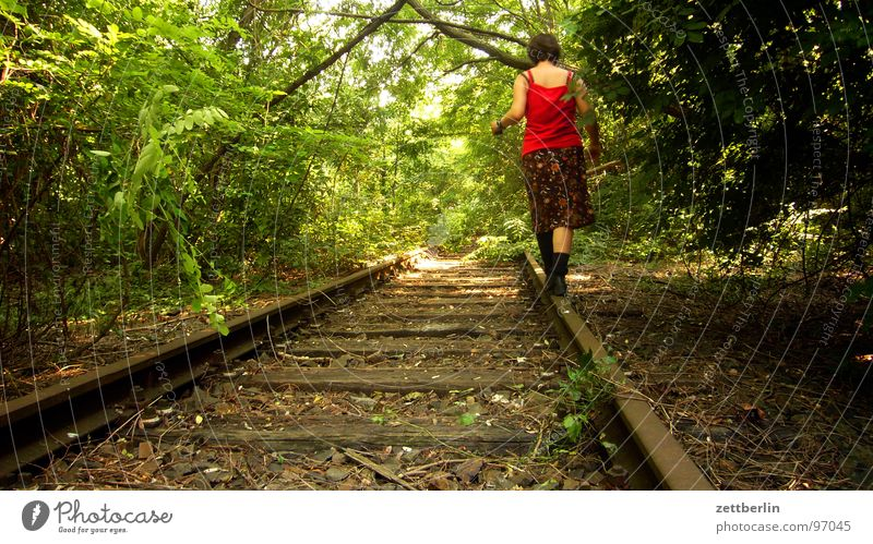 Woman Tree Summer Forest Relaxation Park Contentment Leisure and hobbies Walking Hiking Dangerous Bushes Threat To go for a walk Mysterious Railroad tracks