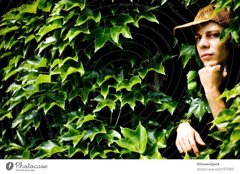Man Nature Hand Green Plant Leaf Think Masculine Hope Growth Desire Concentrate Virgin forest Earnest Gardener Flourish