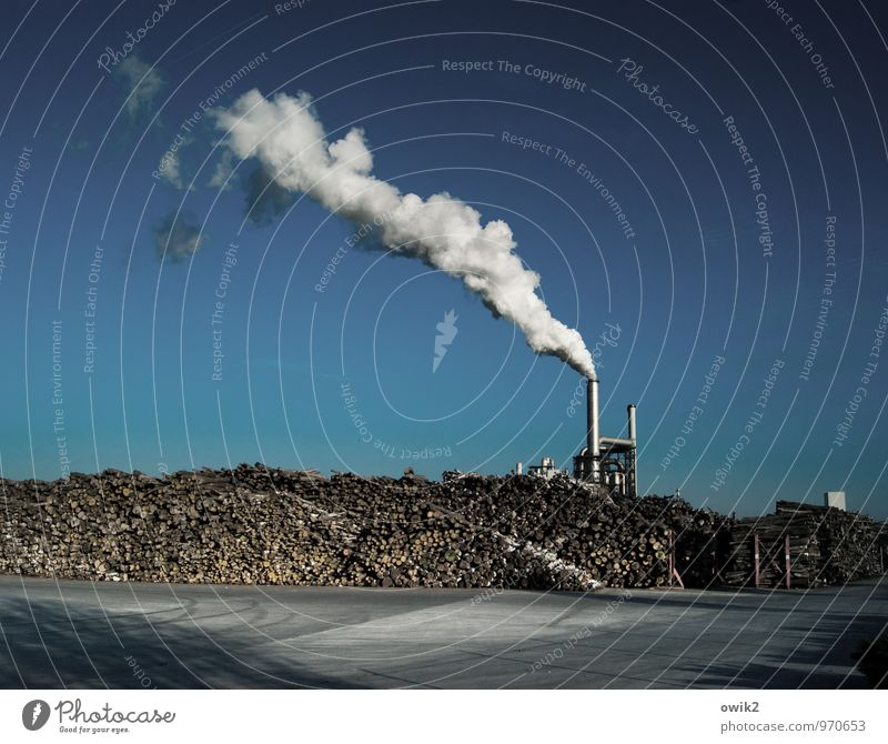 terminus Technology Industry wood processing Cloudless sky Beautiful weather Manmade structures Building Industrial plant Factory Workplace Chimney Wood