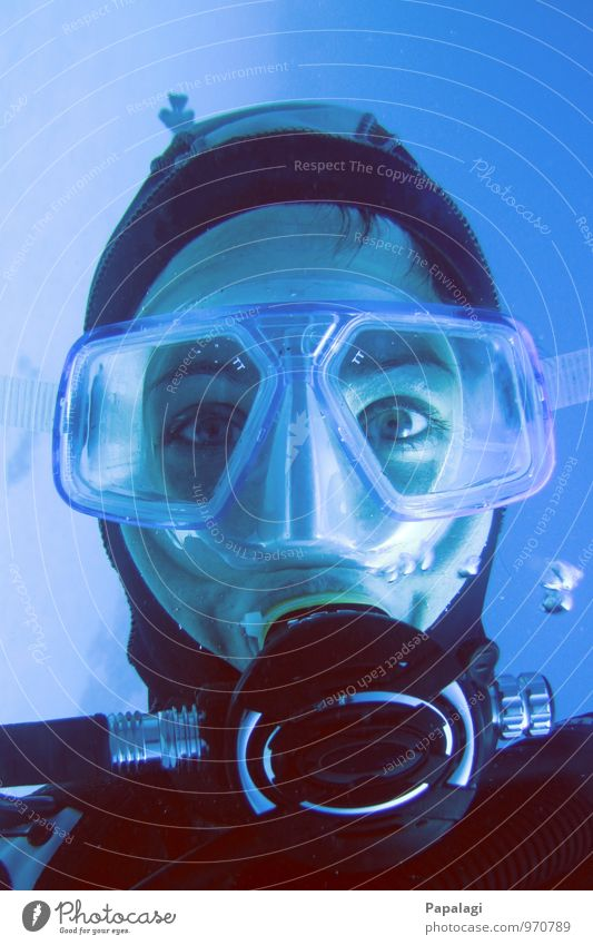 Submerged II Dive Diver Diving goggles Ocean Aquatics Woman Adults 1 Human being 30 - 45 years Breathe Looking Maritime Wet Blue Watchfulness Serene Concentrate