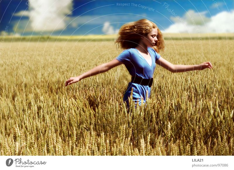 Champ de liberté Field Happiness Summer Yellow Painting and drawing (object) Ecological Joy Blue Grain Sky Nature Running Happy Freedom Weather Arm
