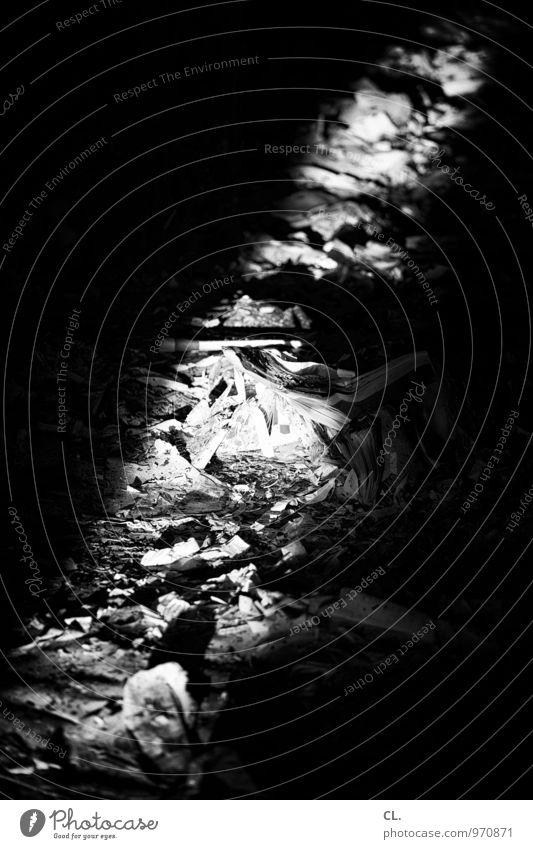 paper Paper Wastepaper Trash Old Dirty Dark Decline Past Transience Destruction Black & white photo Deserted Day Light Shadow Contrast Sunlight