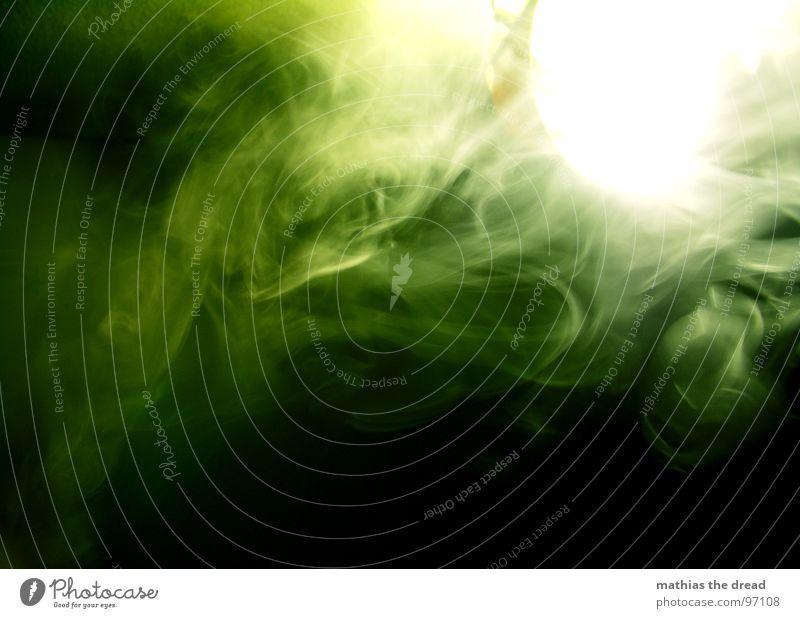 White Green Beautiful Dark Movement Grass Lamp Bright Fog Closed Blaze Smoking Smoke Cigarette Flashy