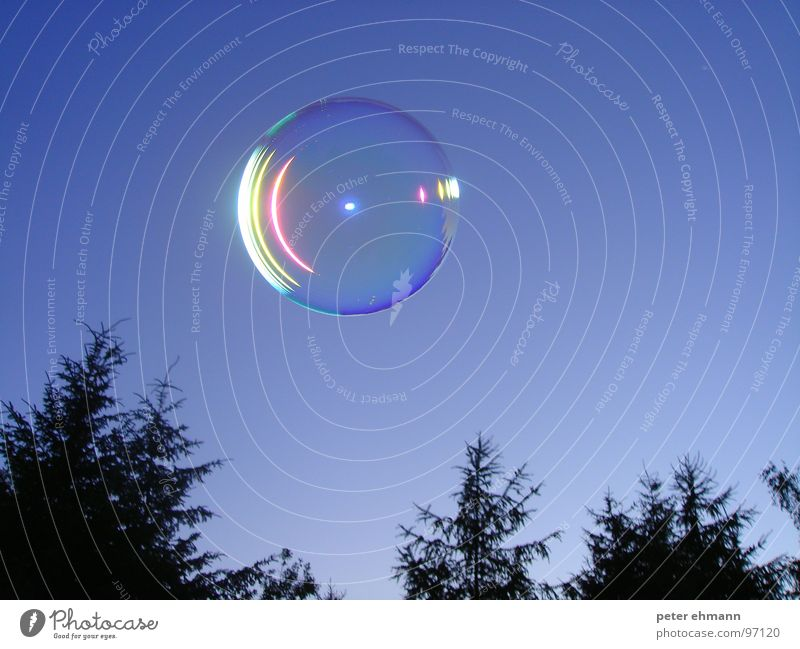 soap bubble Soap bubble Round Tree Fir tree Night Playing Air Hover Reflection UFO Leisure and hobbies Sphere Bubble Sky Blow Flying Blue Ball