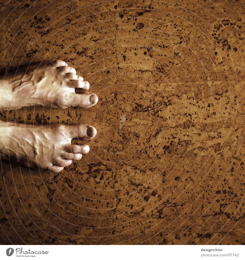 Old Feet Brown Floor covering Stand Toes Section of image Vessel Monochrome Cork Blood pressure Tip of the toe