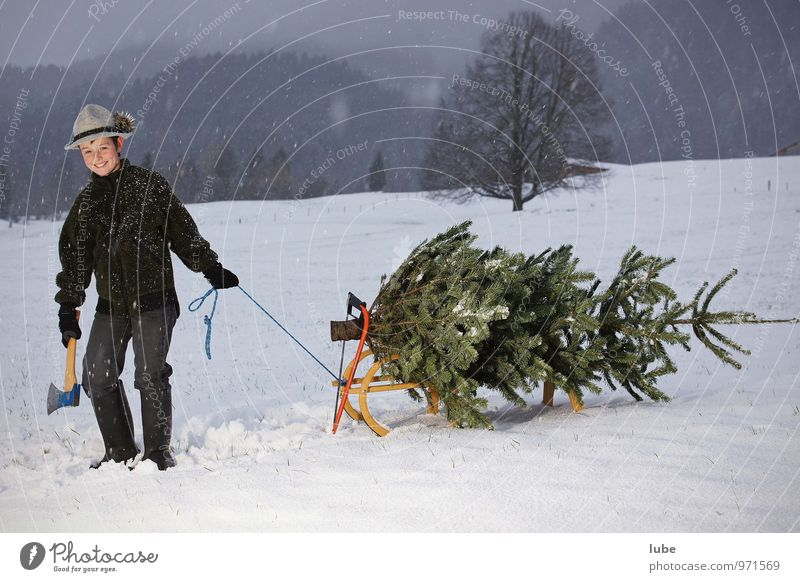 Human being Child Nature Christmas & Advent Tree Landscape Winter Cold Environment Boy (child) Snow Happy Snowfall Infancy 8 - 13 years Christmas tree