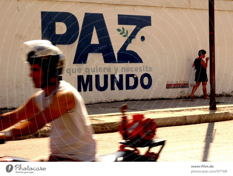 paz mundo Peace Cuba Communism War Pigeon Dove of peace Wall (building) Mural painting Havana Pedestrian Empty Forget El Malecón Night Socialism Nostalgia
