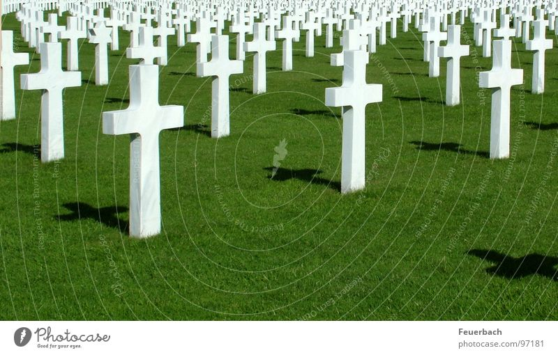 Green White Grass Death Arrangement Earth Perspective Sign Might Eternity Lawn Infinity Historic Grief Peace End