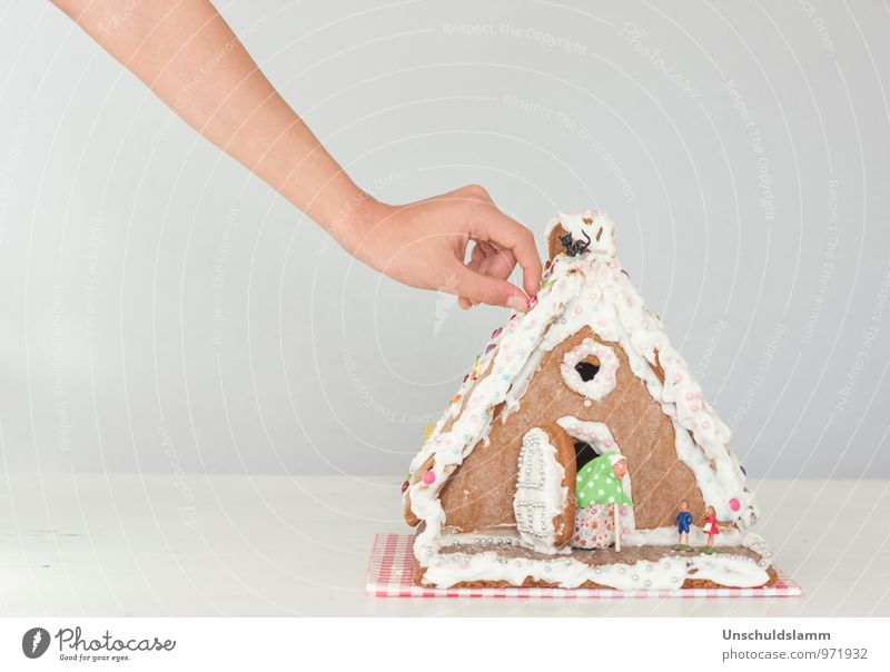 Christmas & Advent Hand Joy House (Residential Structure) Style Eating Food Lifestyle Leisure and hobbies Idyll Living or residing Decoration Infancy Arm