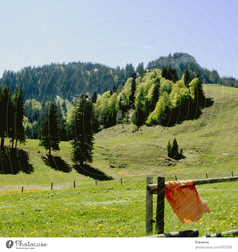 Nature Blue Green Summer Colour Forest Landscape Meadow Mountain Grass Air Orange Hiking Alps Shirt Fence