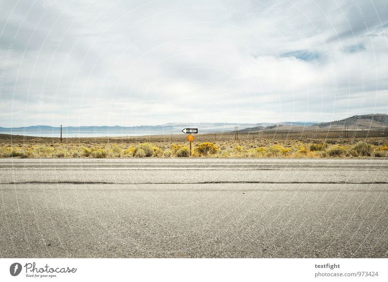 just behind lee vining Environment Nature Landscape Earth Water Lakeside Vacation & Travel Mono Lake Road sign Street Mountain California Colour photo
