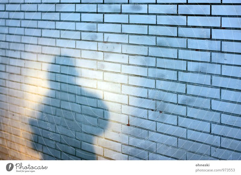 shadow Human being 1 House (Residential Structure) Wall (barrier) Wall (building) Facade Town Hope Fear Identity Anonymous Colour photo Exterior shot Pattern
